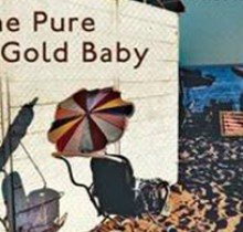 Book Club: Read The Pure Gold Baby